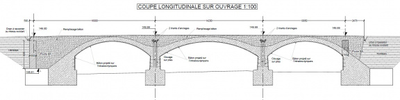 coupe longitudinale